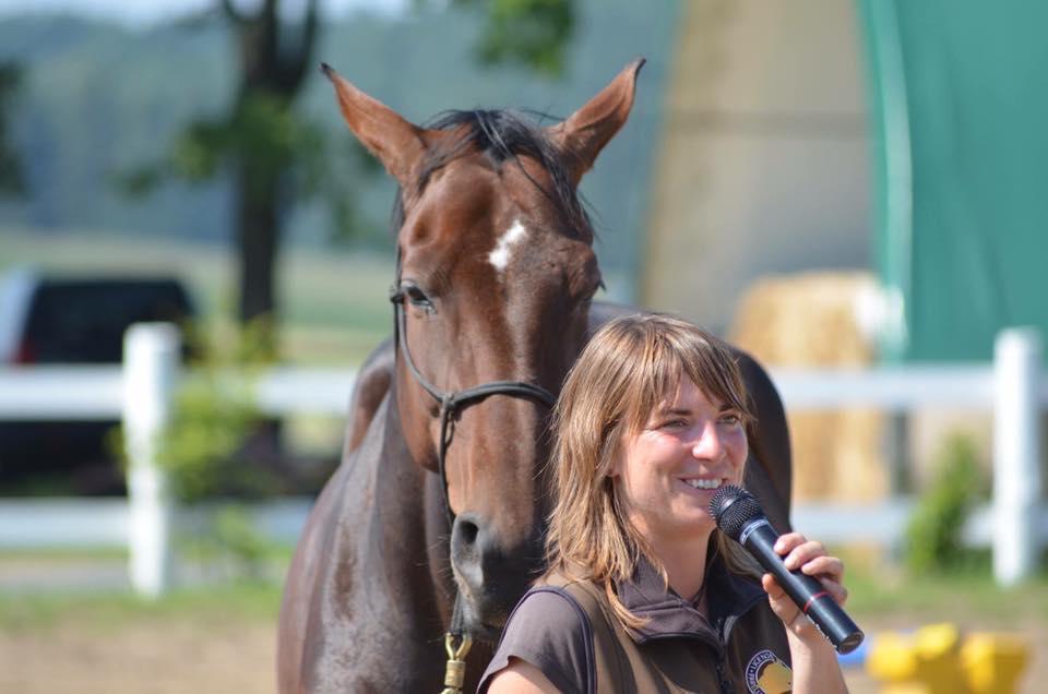 Horsemanship Camp für Einsteiger
