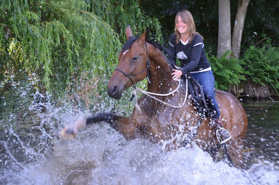 Horsemanship Coaching Tage