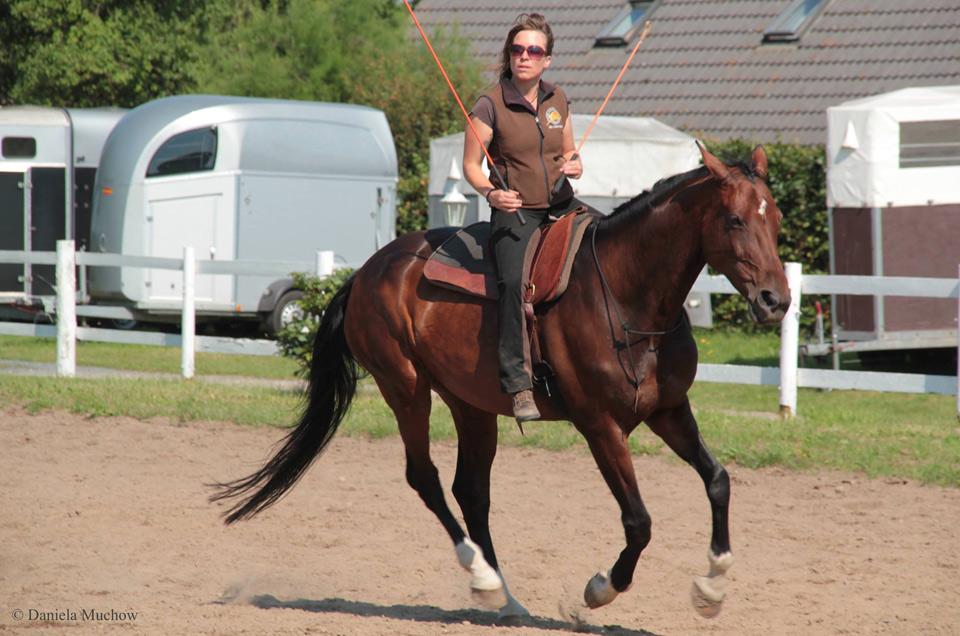 Horsemanship Camp für Fortgeschrittene